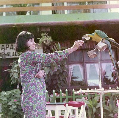 Young woman feeding parrot - p1541m2116879 by Ruth Botzenhardt