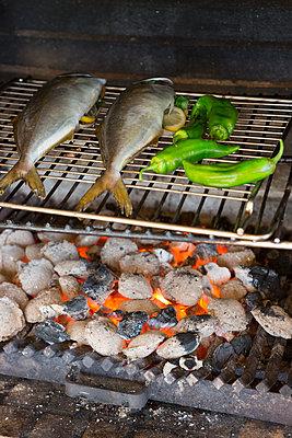 Barbecue fish - p454m1552805 by Lubitz + Dorner