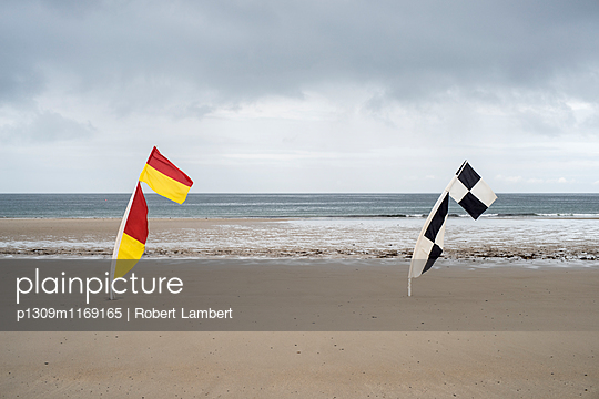 p1309m1169165 von Robert Lambert