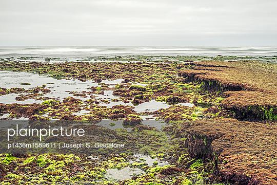 Encinitas, Swami's Beach - p1436m1589611 von Joseph S. Giacalone