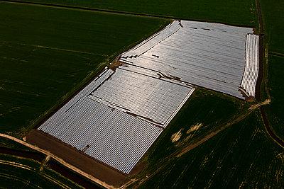 Folien auf dem Feld - p1120m1004300 von Siebe Swart