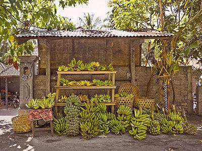 Bananen auf dem Markt - p390m940405 von Frank Herfort