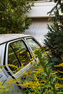 Car in between plants - p739m698448 by Baertels
