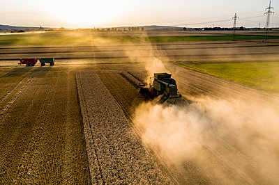 Aerial view of combine harvester on agricultural field against sky during sunset - p300m2143573 by Martin Moxter
