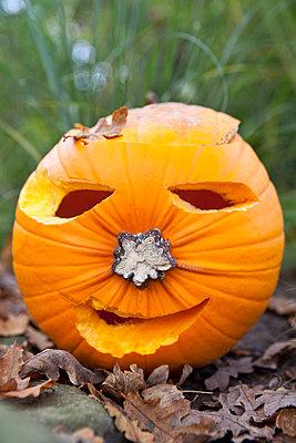 Halloween Kürbis - p781m970802 von Angela Franke