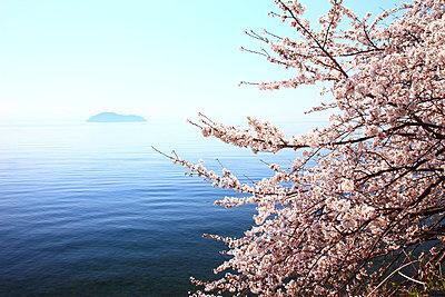 Takashima, Shiga Prefecture - p307m727144f by Seigo Yamamura