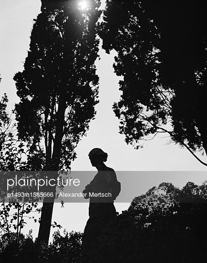 Statue im Park bei Gegenlicht, Giardini, Venedig - p1493m1585666 von Alexander Mertsch