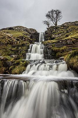 Cray Waterfall, Wharfedale, Yorkshire, England, United Kingdom, Europe - p871m1136134 by Bill Ward