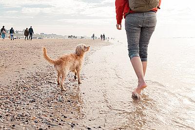 Strandspaziergang mit Hund - p299m1110883 von Silke Heyer
