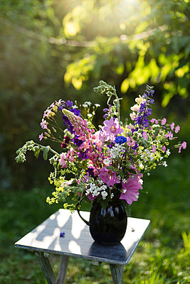 Summer flowers in vase, lupine, hollyhock, cornflower, lady's mantle and bellflower - p300m1156762 by Mandy Reschke