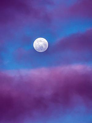 Moody moon - p1543m2260605 by Sophia Snadli