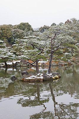 Japanischer Garten in Kyoto - p7980209 von Florian Löbermann
