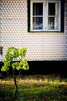 Fassade mit Sechsecken - p606m1481443 von Iris Friedrich