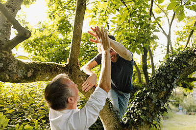 Father doing high-five to cheerful son climbing tree in back yard - p300m2276967 by Gustafsson