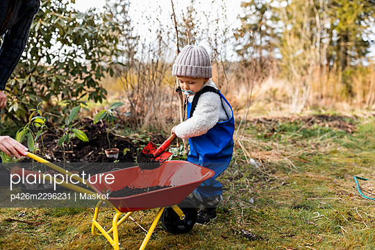 Full length of boy putting dirt with shovel in wheelbarrow at back yard - p426m2296231 by Maskot