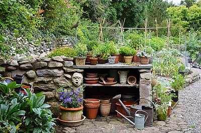 Half-height stone wall with plant pots on built-in shelves in front of vegetable patch - p1183m997825 by Maximilian Stock