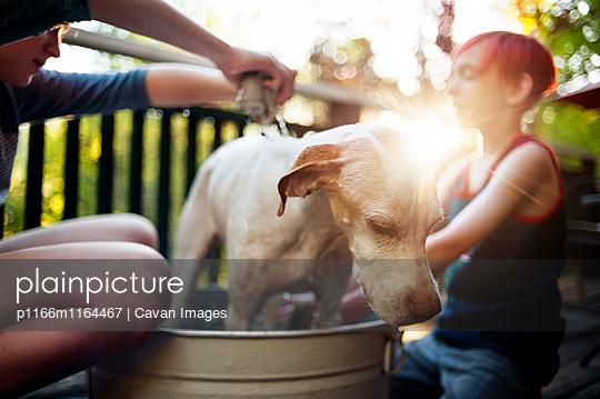 p1166m1164467 von Cavan Images