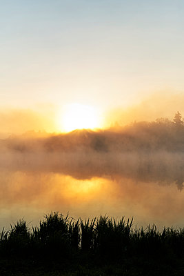 Germany, Lake with shore and grass in the fog - p1312m2278435 by Axel Killian