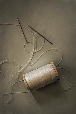 Needle and thread - p1228m1137765 by Benjamin Harte