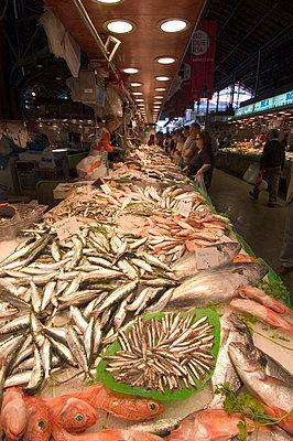 Fish for sale in La Boqueria market; Barcelona, Spain - p442m839909 by Ian Cumming