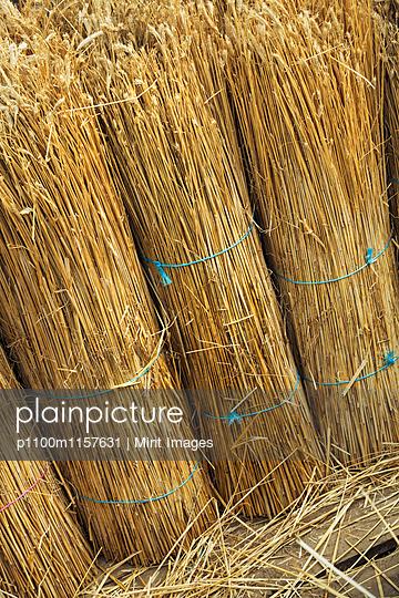 p1100m1157631 von Mint Images
