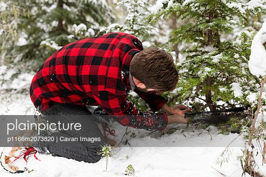 p1166m2073820 von Cavan Images