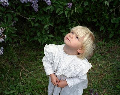 Innocence - p945m701075 by aurelia frey