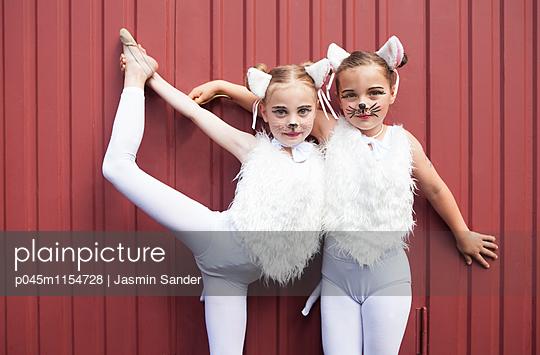 Zirkuskatzen - p045m1154728 von Jasmin Sander
