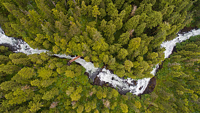 High angle view of river flowing amidst forest - p1166m1507927 by Cavan Images
