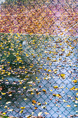 Autumn leaves on wet tennis court - p1170m1491681 by Bjanka Kadic
