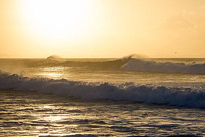 Morgens, Estoril, Portugal - p1201m1026115 von Paul Abbitt