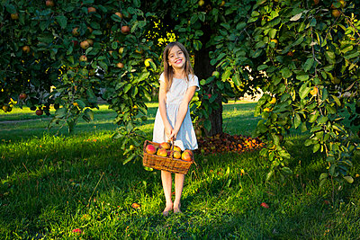 Portrait of smiling little girl with wickerbasket of picked apples standing barefoot on a meadow - p300m2070340 by Larissa Veronesi