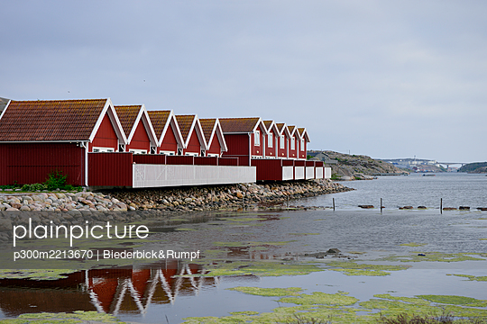Sweden, Kungshamn, Row of typical red wooden houses - p300m2213670 by Biederbick&Rumpf