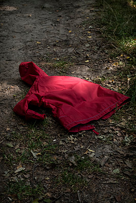Lost red coat in a forest - p1228m2116342 by Benjamin Harte