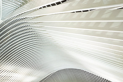Roof construction in railway station Liège-Guillemins - p587m1155053 by Spitta + Hellwig