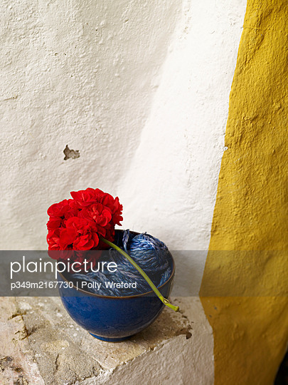 Red geranium and bowl of string, Spain - p349m2167730 by Polly Wreford