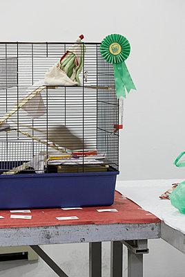 Käfig mit Ratte I - p250m808710 von Christian Diehl