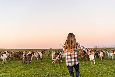 Back view of girl herding a goat herd on pasture - p300m2079736 by Eloisa Ramos