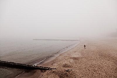 Ostseestrand mit Buhnen und laufender Person im Nebel - p627m1035764 von Hendrik Schirmann