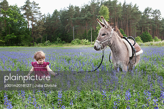 Girl leading donkey through field of wildflowers - p301m2018127 by Julia Christe