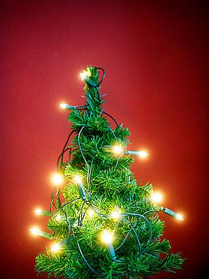 Künstlicher Weihnachtsbaum mit Lichterkette - p4470232 von Anja Lubitz