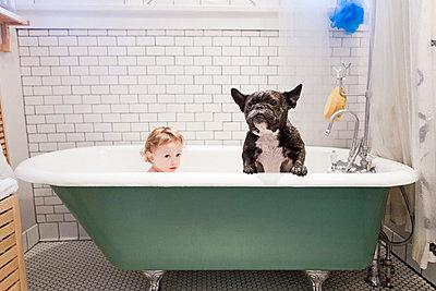 Girl sitting with bulldog in bathtub - p429m768207 by Robyn Breen Shinn