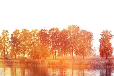Am Ufer    - p450m1092511 von Hanka Steidle