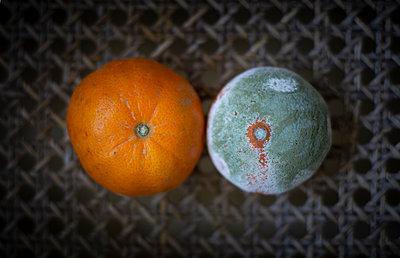 Moulded orange - p1657m2263536 by Kornelia Rumberg