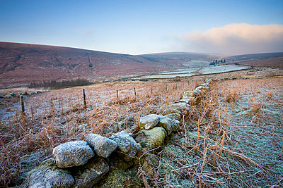 Frost covered moorland landscape near Challacombe Down, Dartmoor National Park, Devon, England, United Kingdom, Europe - p8713017 by Adam Burton