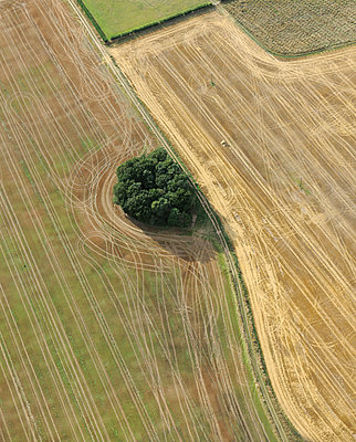 Farmers fields aerial view - p1048m1069289 by Mark Wagner