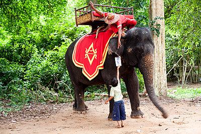 Kambodscha - p940m851833 von Bénédite Topuz