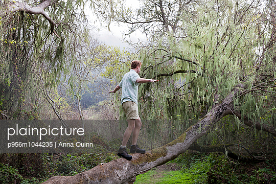 Young man balancing on tree - p956m1044235 by Anna Quinn