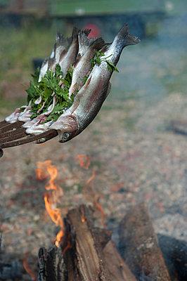 Forellen am Lagerfeuer - p1354m1362629 von Kaiser