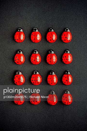 Gruppe von 15 kleinen bemalten Marienkäfern - p1302m2045575 von Richard Nixon